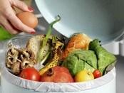 comida verduras